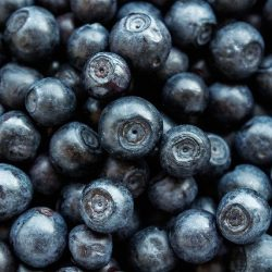 blueberry-5417154_640