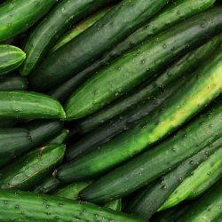 cucumber-40