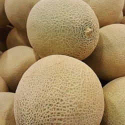 melon-1388338_640