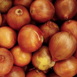 onion-2735796_640